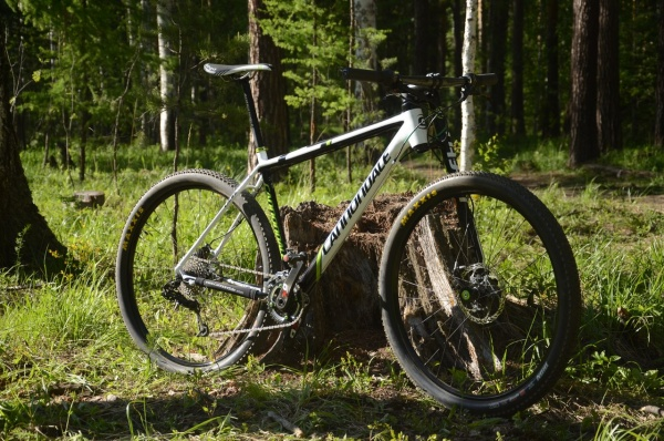 Cannondale Carbon F29 Custom