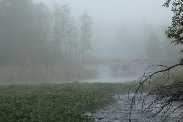 Туманное раннее утро
