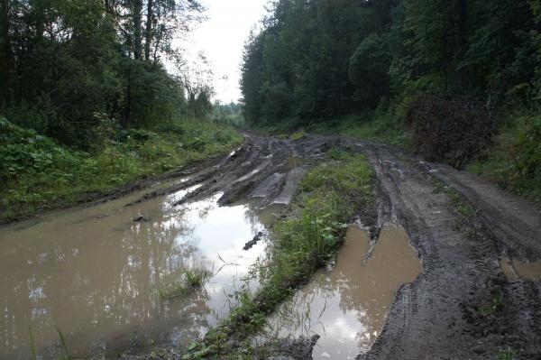 Мокрая разбитая дорога