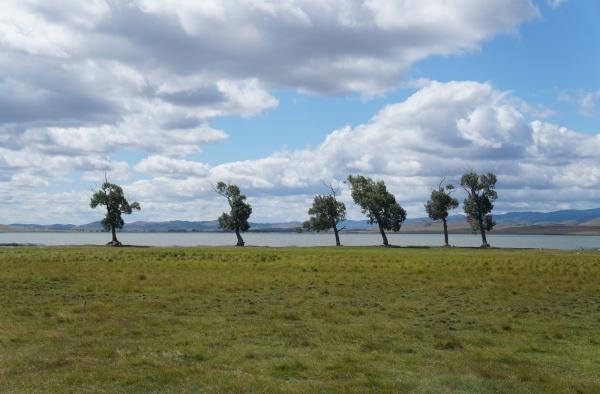 Берег озера Черганчи